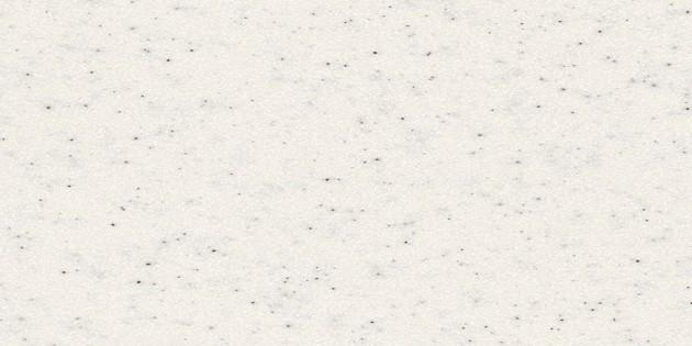 白桦 SB412